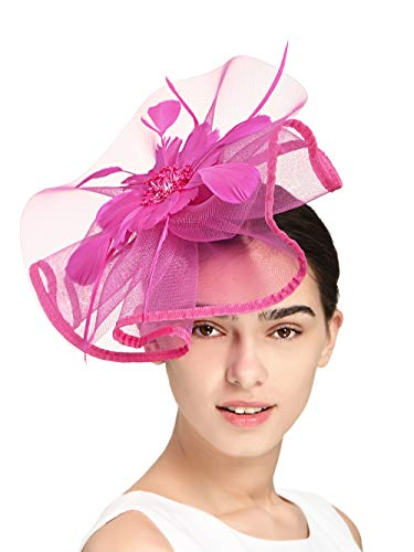 Fascinators Hat for Women Tea Party Headband Fancy Dress Accessories Wedding Cocktail Flower Mesh Feathers Hair Clip (Z-Rose) -