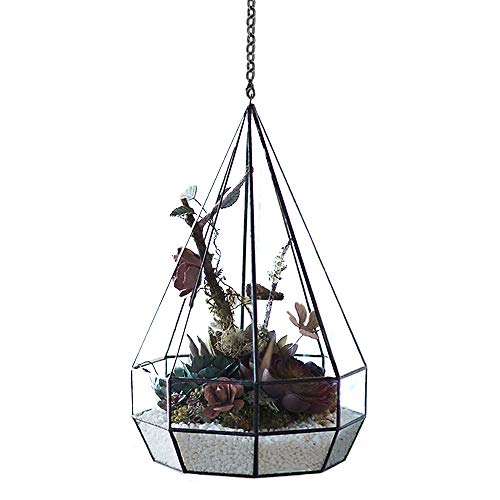 Hanging Glass Geometric Terrariums, Modern Polyhedron Diamond Teardrops Shape Clear Glass Indoor Garden Moss Micro Landscape Planter Container/Candle Holder for Succulent Air Plant