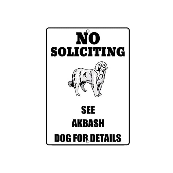 Aluminum Metal Sign Funny Akbash Dog No Soliciting See Informative Novelty Wall Art Vertical 8INx12IN 1