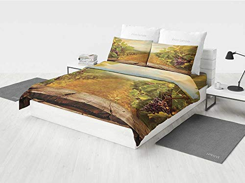 Grape Border Flat - Modern Girls Bedding Sets Vineyard Grapes Natural Rustic Vinatage Scenery Orchads Wine Home Kitchenware Cafe Printing Four Pieces of Bedding Set Green Brown Blue