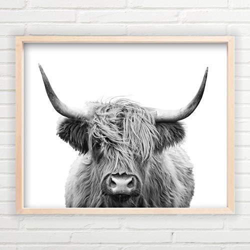 Highland Cow Wall Art | Unframed 11