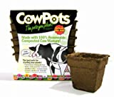 COWPOTS 12POTS/PACK SQUARE COWPOTS 12PK 4IN 12 MINT SQUARE 4INCH
