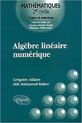 Algèbre linéaire numérique : Cours et exercices