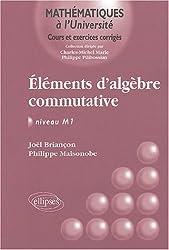 Eléments d'algèbre commutative : Niveau M1