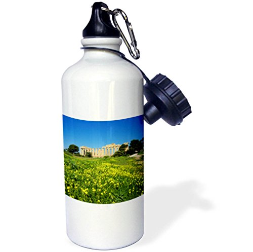 3dRose Danita Delimont - Ruins - Italy, Sicily, old city of Selinunte, ruins of the Greek temple - 21 oz Sports Water Bottle (wb_277617_1) by 3dRose