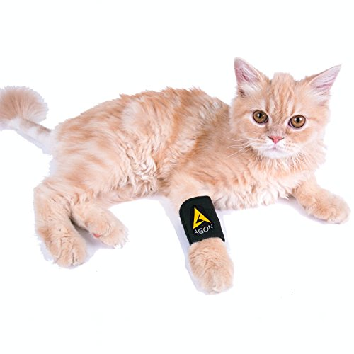 Agon Dog Canine Front Leg Brace Paw Compression Wraps with Protects Wounds Brace Heals and Prevents Injuries and Sprains Helps with Loss of Stability Caused by Arthritis (XXS/XS)