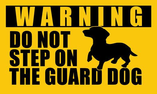 - MAGNET 3x5 inch DACHSHUND Do Not Step On Guard Dog Sticker - decal dog funny small dach Magnetic vinyl bumper sticker sticks to any metal fridge, car, signs