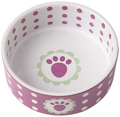 PetRageous 2 Cup Daisy Dots Bowl, 5