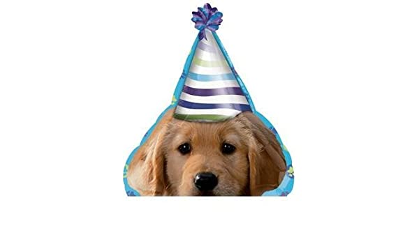Amazoncom The Dog Puppy Pups Wearing Party Hat 21 Happy Birthday