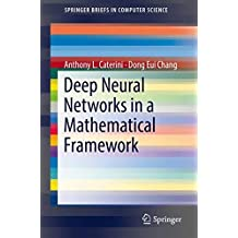 Deep Neural Networks in a Mathematical Framework