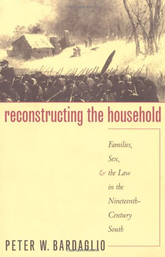 Reconstructing the Household: Families, Sex, and the Law in the Nineteenth-Century South (Studies in Legal History)