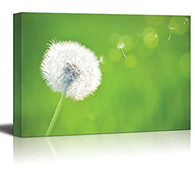 Canvas Prints Wall Art - Spring Dandelion on Green Natural Background - 16
