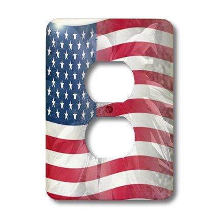 3dRose LLC lsp_41185_6 Sunflower USA Flag-America-Patriotic, 2 Plug Outlet Cover