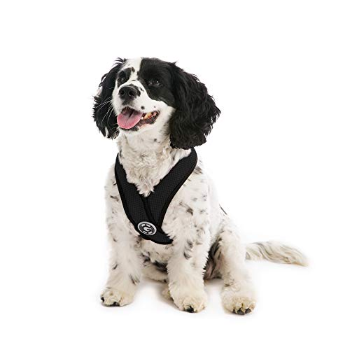 Gooby - Comfort X Head-in Harness, Choke Free Small Dog Harness with Micro Suede Trimming and Patented X Frame, Black, X-Large