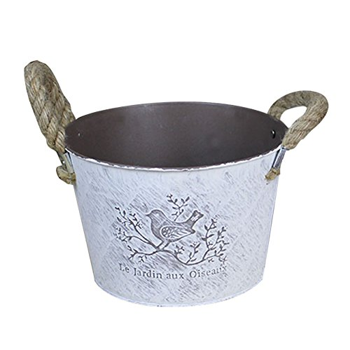 Vintage Metal Iron Flower Pot Shabby Barrel Planter With Rope Handle, Handicraft Garden Watering Can Plant Planter Metal Plant Bucket Bonsai Pot for Gardening or Floral Arrangements (big circle) by blue--net