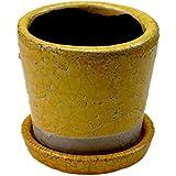 [DULTON]ダルトン Color grazed pot S テラコッタ 陶器鉢 CH15-G527 Yellow