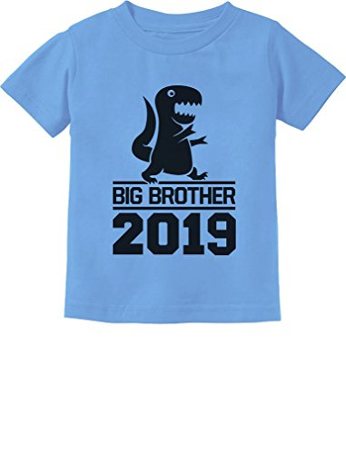 Brother Kids T-shirt - Tstars - Gift for Big Brother 2019 T-Rex Boy Toddler Kids T-Shirt 4T California Blue