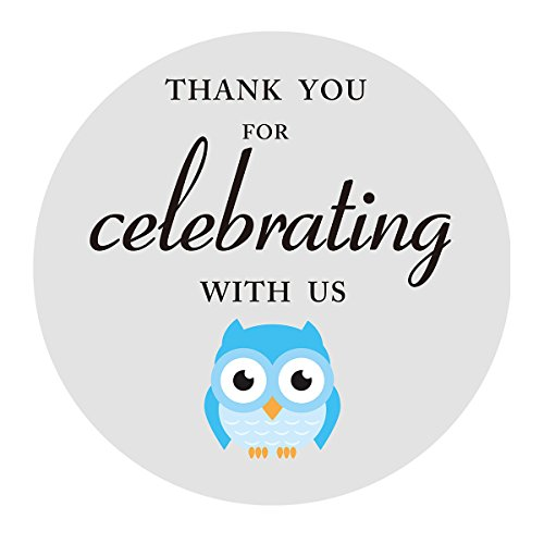 MAGJUCHE Blue Grey Owl Thank You Stickers, Boy Baby Shower or Birthday Party Favors Labels, 2 Inch, 40-Pack -