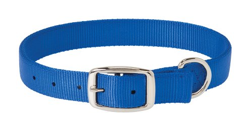 - Weaver Leather Prism Classic Collar, 1 x 27-Inch, Blue