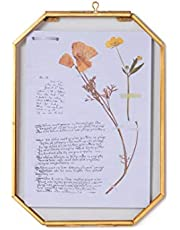 NCYP Wall Hanging 5X7 inches Long Octagon Herbarium Brass Glass Frame for Pressed Flowers, Dried Flowers, Poster, Double Glass, Floating Frame Style, Glass Frame only