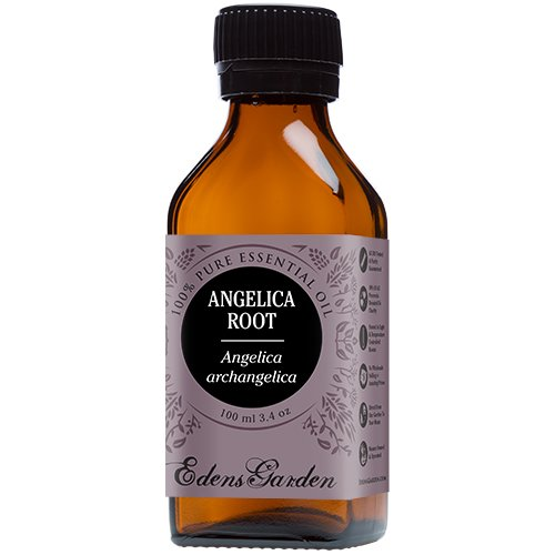 Angelica Root 100% Pure Therapeutic Grade Essential Oil by Edens Garden- 100 ml by Edens Garden