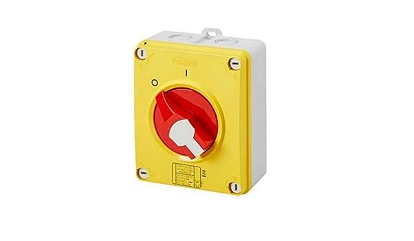 GW70434P 70RTHP Interruptor de aislador giratorio 2 polos de fase /única DP 32 Amp