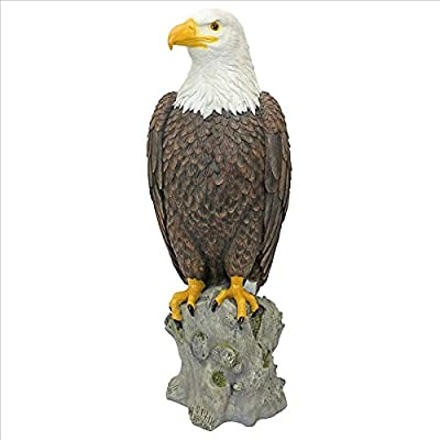 Design Toscano Majestic Mountain Eagle Outdoor Garden Statue, 21 Inch, Full Color