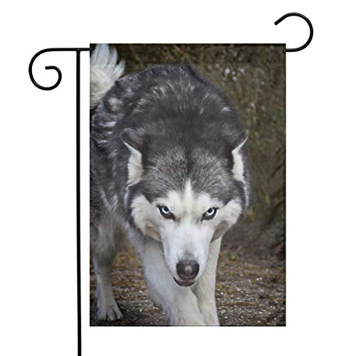 "Gdrh A Fierce Husky Dog Floral Wreath Garden Flag Vertical Single Sided 12"" X 18"" Spring Summer Yard Outdoor Decorative"