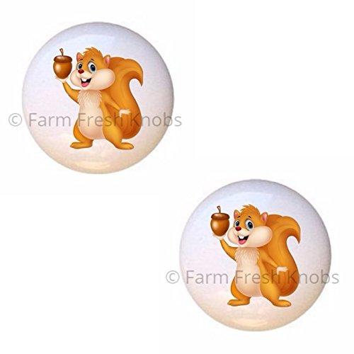 (SET OF 2 KNOBS - Squirrel Holding Acorn - Squirrels - DECORATIVE Glossy CERAMIC Cupboard Cabinet PULLS Dresser Drawer KNOBS)