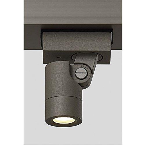 リクシル TOEX 12V 美彩 ダウンスポットライト DNSP-G1型 45° LED 8 VLH14 AB 『リクシル ローボルトライト』 『エクステリア照明 ライト』 オータムブラウン B072J2HKXH 14600