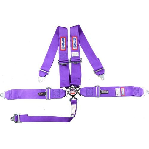 R.J.S. Safety Equipment 1031708 5-Point Cam-Lock Racing Harness Purple