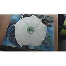 Georgia O'Keefe: One Hundred Flowers