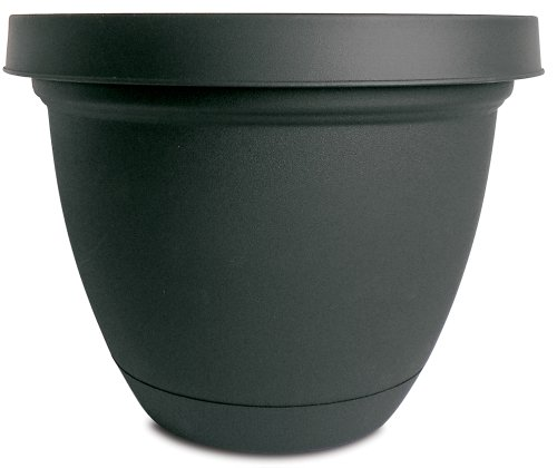 Infinity Flower (Akro-Mils Infinity Planter with Attached Saucer, 16-Inch, Black)