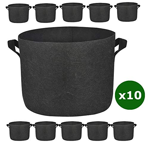 10 gallon plant pot - 7