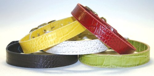 OmniPet Faux Crocodile Signature Leather Pet Collar, Yellow, 1-1 2 by 28