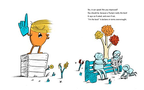 A-Childs-First-Book-of-Trump