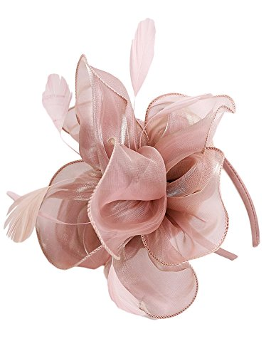 Urban CoCo Women's Vintage Flower Feather Mesh Net Fascinator Hair Clip Hat Party Wedding (Nude Pink-series 4)