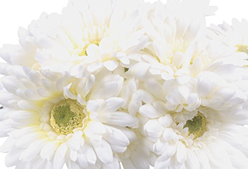 CraftMore White Gerbera Daisy Stems with Yellow Core 14 Inch Set of 12