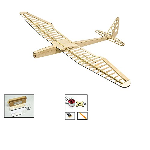 Balsa wood Radio Remote Controlled Electric F16 Glider SUNBIRD Aeroplane Laser Cut Kit Wingspan 1600mm Un-assembled for adults;Need to Build for Flying Hobby Play (F1602) ()