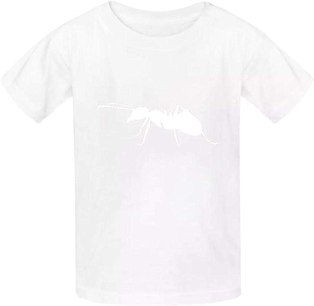 TSDDM Ant New Summer Cotton Boys t-Shirts Short Sleeve Solid T-Shirs