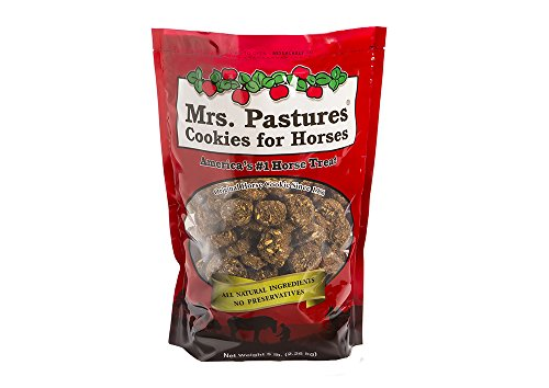 Apple Cookie Horse Treats - 2