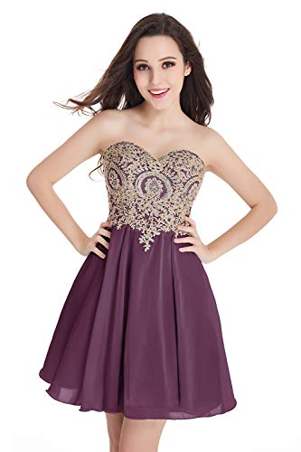 Women's Short Prom Dresses Homecoming Dress Juniors Graduation Dress -