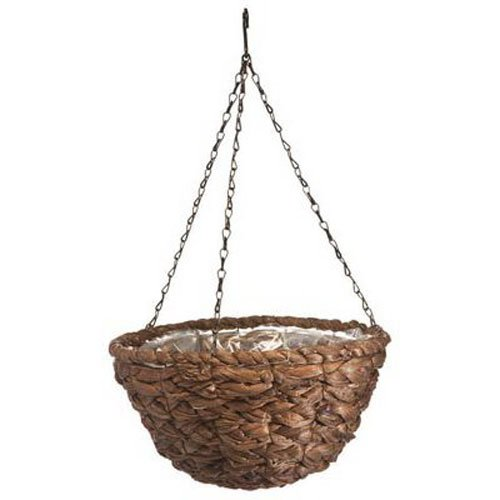 Panacea 88639 Water Hyacinth Hanging Basket, 14-Inch (Water Hyacinth Plant compare prices)