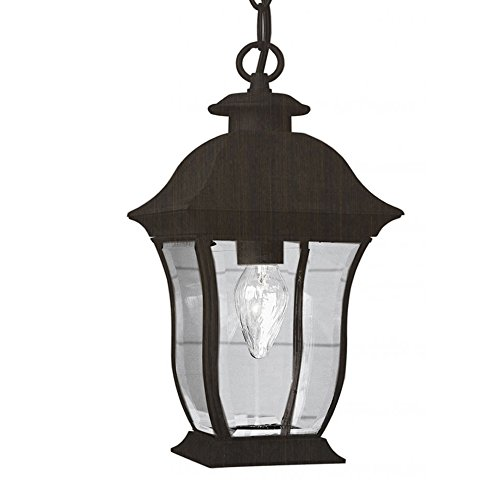 Transglobe Lighting 4974 WB Outdoor Hanging Pendant with Beveled Glass Shade, Weathered Bronze - Pendant Lighthouse Outdoor Lamp