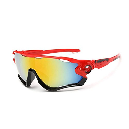 Phellps Newest Outdoor Sports Sunglasses - Professional Fashion Cycling Hiking Skiing or - Bike Glasses