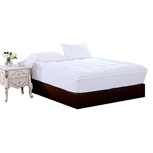 Where to find home accents mattress pad?