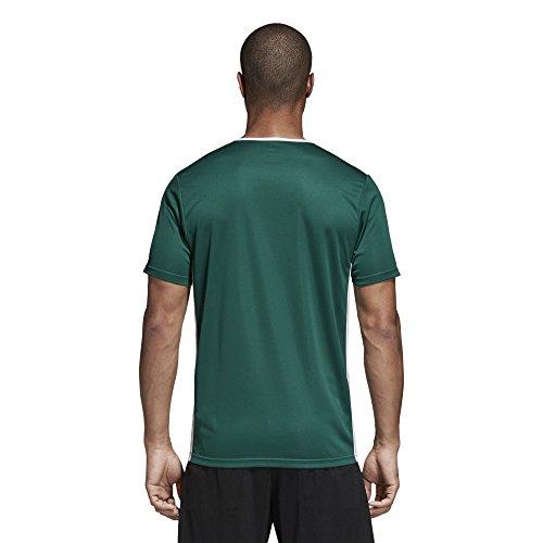 white Collegiate Entrada Adidas shirt T Uomo 18 Green wpd8qB0d