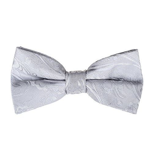 Silver Mens Bowties (EBD1B03A Perfect Economics Excellent Silver Patterned Pre-tied Bowtie Luxury Anniversary Presents Microfiber for Lawyers By Epoint)