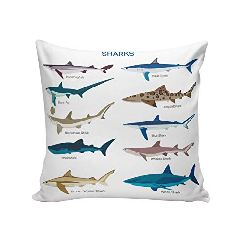 Shark Throw Pillow Cushion Cover,Square 16 x 16inch Satin Fabric Two Sides, Collection Types Sharks Bronze Whaler Piked Dogfish Whlae Shark, Pillow Sham Cases for Couch Sofa Chair ()