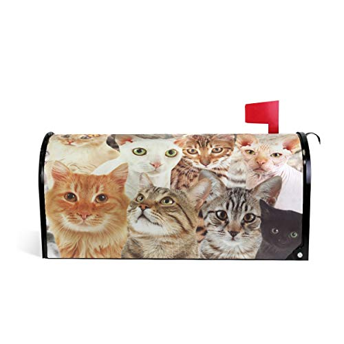 """WOOR Cute Cats Magnetic Mailbox Cover Standard Size-18""""x 20."""